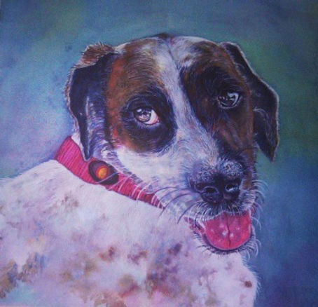 Indie - Watercolor Pet Commission Painting by Susan Miller