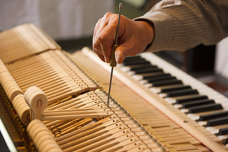 Technician regulationg a grand piano action