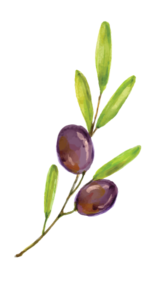 Olive Tree Formats-site-06.png