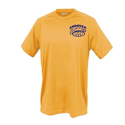 Gildan DryBlend Tee (Gold or Grey)