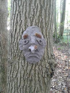 treeface.jpg