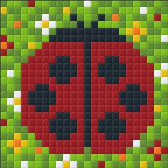 Ladybird XL Magnet Kit