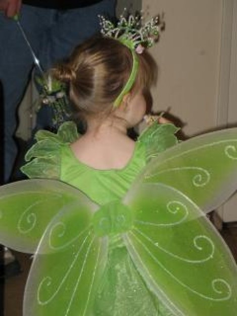 green-wings_19-104191.jpg