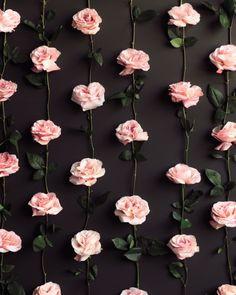 Chegou a primavera! E aproveite as flores com 8 sugestões para a sua festa!