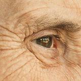 wrinkles-1024x512_edited.jpg