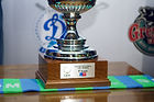 Кубок Вызова по волейболу