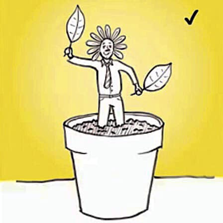 Cartoon of a human planted in a plant pot, holding leaves and standing in the sunshine.