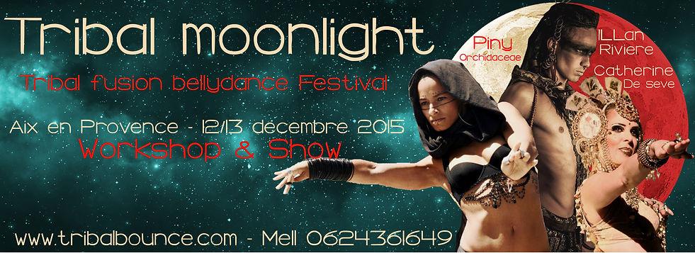 moonlightband1.jpg
