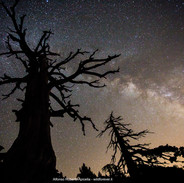 8_Cime stellari_Parco Nazionale del Poll