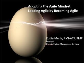 Adopting the Agile Mindset
