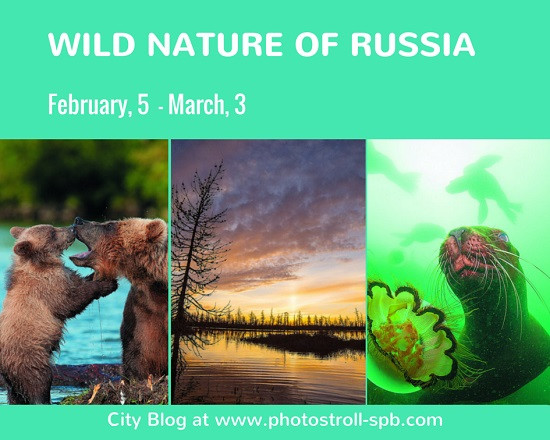 WILD NATURE OF RUSSIA
