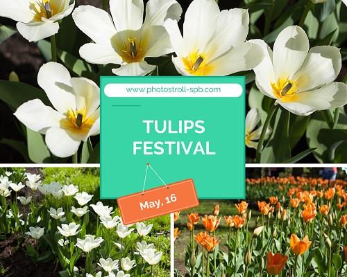 10 TULIPS FESTIVAL 500 px.jpg