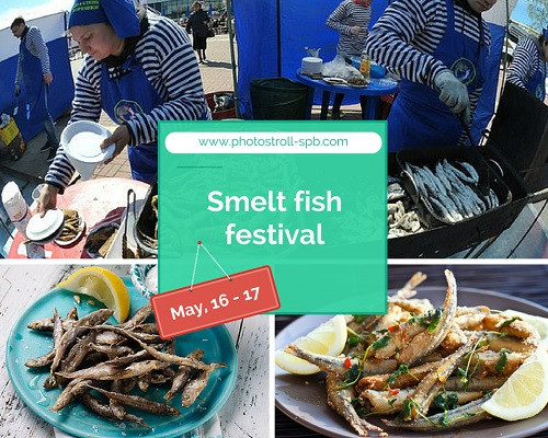 8 Smelt fish festival 500 px.jpg