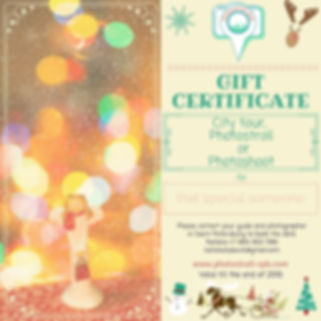 Gift certificate for a tour of St petersburg