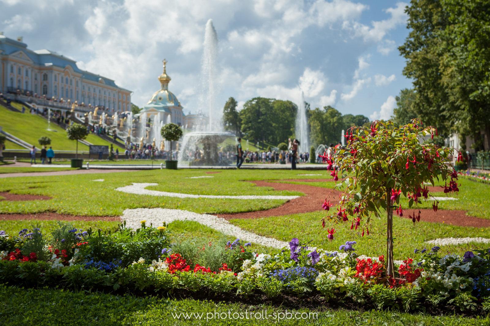 PHOTOstroll in Peterhof