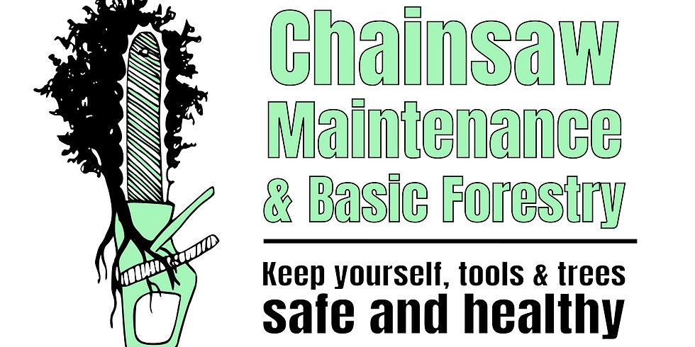 Chainsaw Maintenance & Basic Forestry Workshop