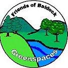Baldock, Greenspaces