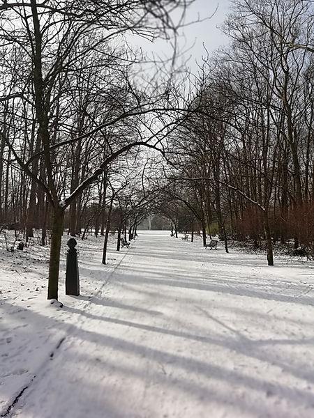 Prendre soin de soi en suivant le cycle des saisons. Ateliers dans le Parc Josaphat - Coaching Présence Intégrale