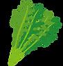 vegetable_mizuna.png