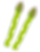 asparagus - コピー.png