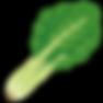 vegetable_komatsuna.png