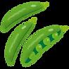 vegetable_snap_endou.png