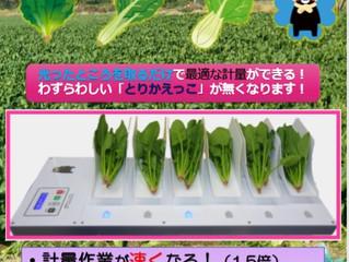 順調です!葉物野菜の計量機