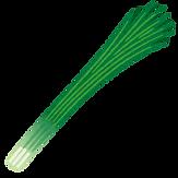 vegetable_hoso_negi.png