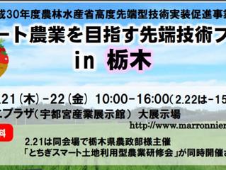 栃木県宇都宮市で実機を展示します