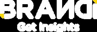 BRANDi Get Insight logo -01.png