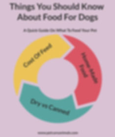 Things to know about food for dogs