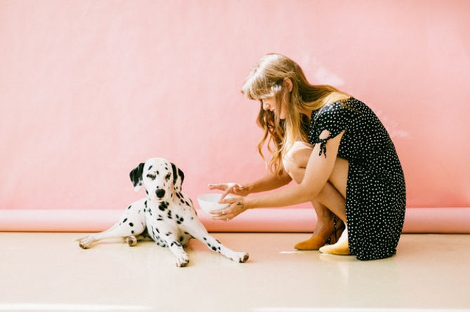 black and white dalmatian dog not in a mood to eat safe foods for dogs