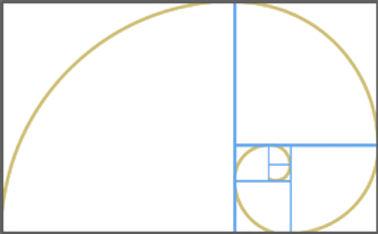 Comp_FibonacciSpiral.jpg