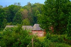 Tobin Farm, Skiff  Mountain