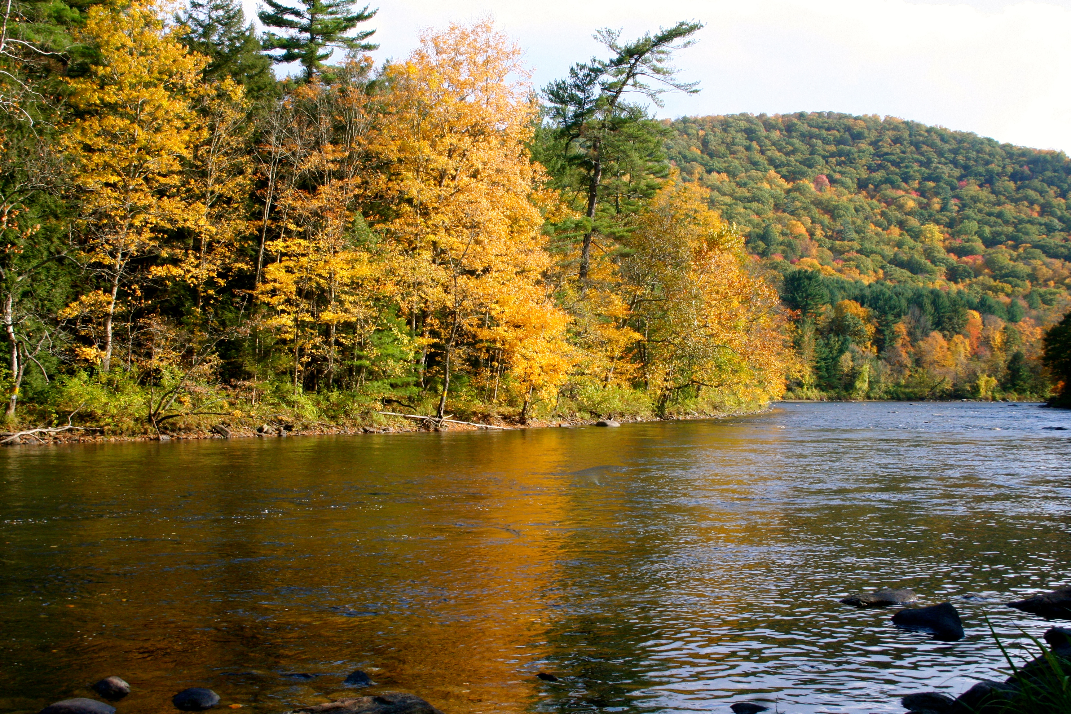 Fall on the Housatonic