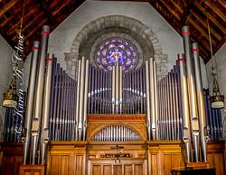 Holcombe Organ