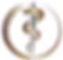 Synergy Logo PRINT FINAL copy2.png