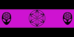 Official Flag.png