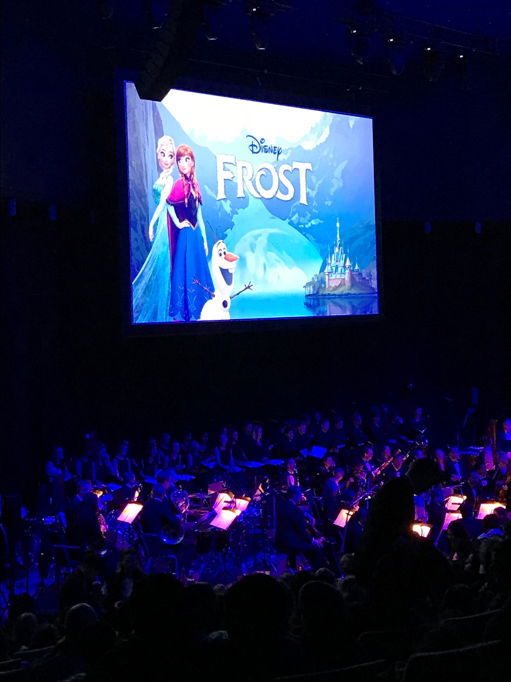 Disney Live in Concert med Stockholm Concert Orchestra, Hire Sound Sweden at Waterfront