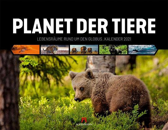 Planet der Tiere Kalender 2021