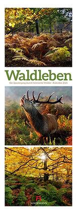 Waldleben Triplet-Kalender 2021