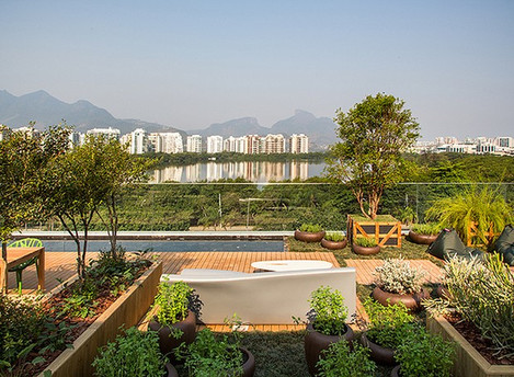 Olhar para o jardim aumenta a produtividade e relaxa