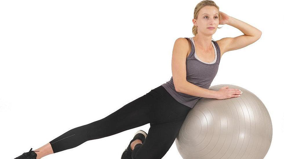 Sunny Health Anti-Burst Gym Ball 65cm