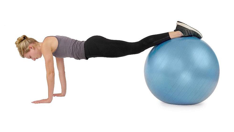 Sunny Health Anti-Burst Gym Ball 75cm