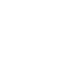 53 % Overweight Dogs (6).png