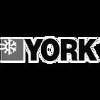 york_edited_edited.png