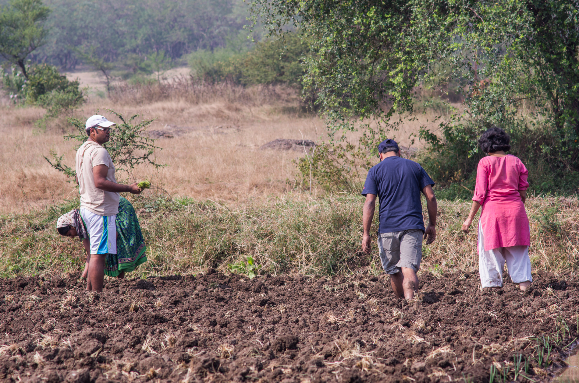 Mentoring farmers