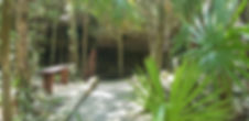 Cenote%20Quantana%20Roo_edited.jpg
