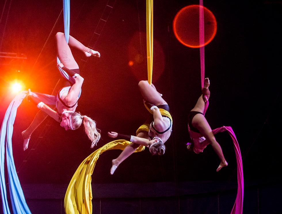 stardust circus