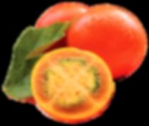 Lulo Papagayo Natural Fruit Purees